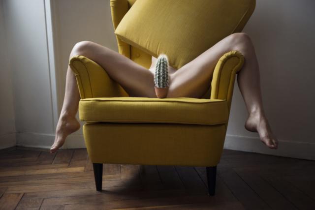 Un gros cactus sur un fauteuil devant la vulve d'une femme jambe écartée.